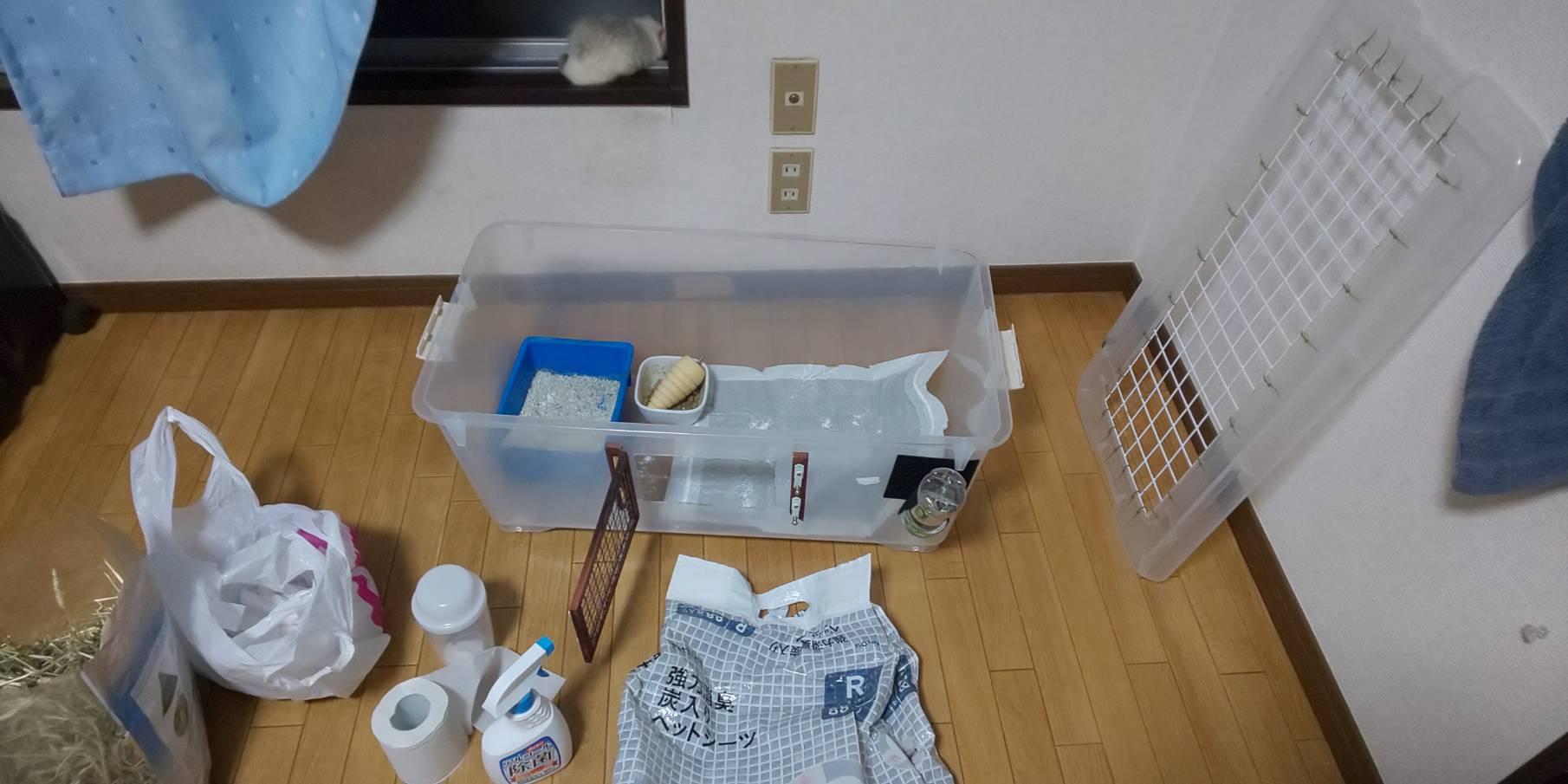 【ファンシーラット】ケージのお掃除 ファンシーラットは意外と臭う?オシッコ対策。