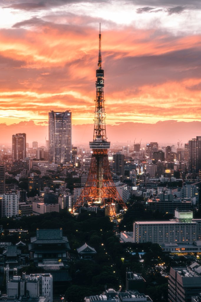 【写真】 夕焼けに沈む東京タワーが絶景すぎる