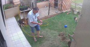 【駆除】ブラジル人のゴキブリ駆除の方法がヤバすぎるwww
