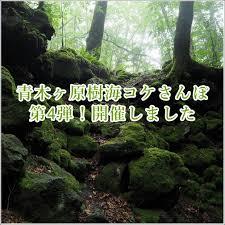 【富士の樹海】 死体を探しに樹海に行ってきた!