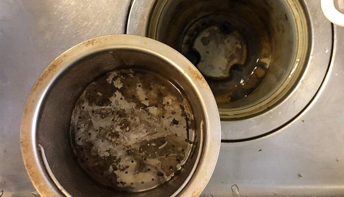 キッチンの排水口やべー! 臭っ 臭っw #排水溝